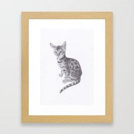 Bengal Cat Drawing Framed Art Print