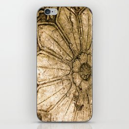 Stoned Garden Relic iPhone Skin