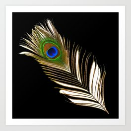 ART DECO PEACOCK FEATHER BLACK ART Art Print
