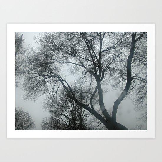Mistery trees Art Print
