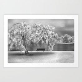 WILLOW ON THE LAKE Art Print