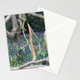 Spring comes to Kenwood Stationery Cards