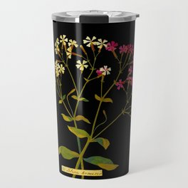 Silene Armeria Mary Delany Floral Paper Collage Delicate Vintage Flowers Travel Mug