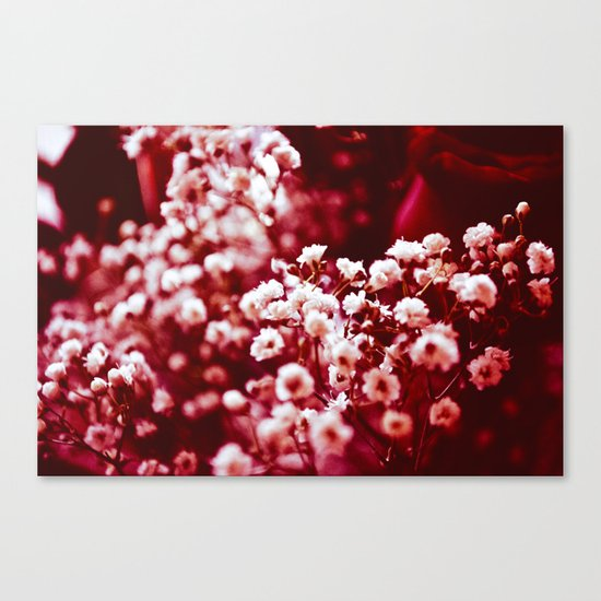 Red Happiness Canvas Print