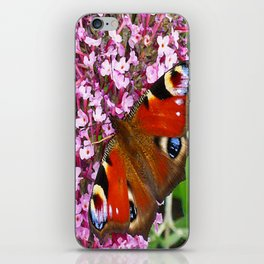 Peacock Butterfly on a Buddleia iPhone Skin