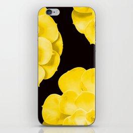 Large Yellow Succulent On Black Background #decor #society6 #buyart iPhone Skin