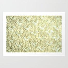 Lace knitting detail Art Print