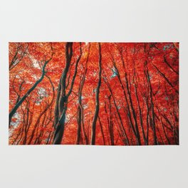Red Forest of Sunlight Rug
