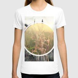 Peel sunset lll - circle graphic T-shirt