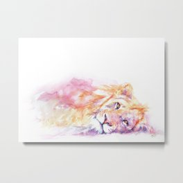Lazy Days - African Lion Metal Print