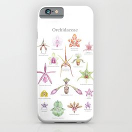 Selection of Orchid Species  iPhone Case