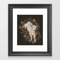 Lamb Framed Art Print