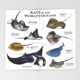 Rays of the World's Oceans Throw Blanket