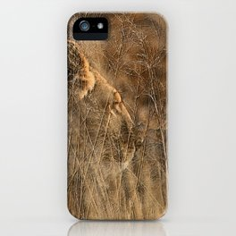 Lioness on Alert iPhone Case
