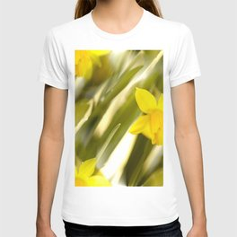 Spring atmosphere with yellow narcissus T-shirt