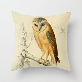 Naturalist Barn Owl Throw Pillow