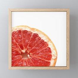Grapefruit Framed Mini Art Print