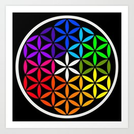 Secret flower of life Art Print