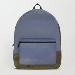 A Nomads Horse Backpack