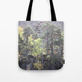A Dream Pang Tote Bag
