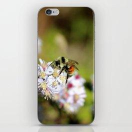 Sunny Bee iPhone Skin