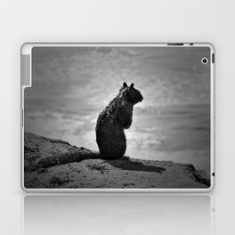 Squirrel standing on a cliff overlooking the ocean Laptop & iPad Skin