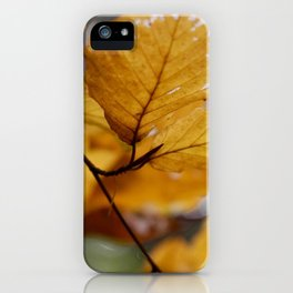 leaves in brown by Janina iPhone Case