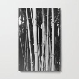 Exakta_Fp4+_NeofinBlau_p05 Metal Print