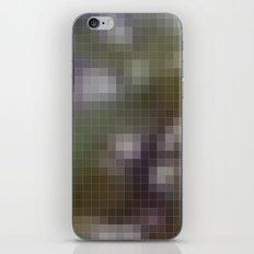 One iPhone & iPod Skin