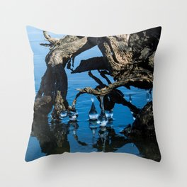 Polar Vortex: Warped Perceptions Throw Pillow