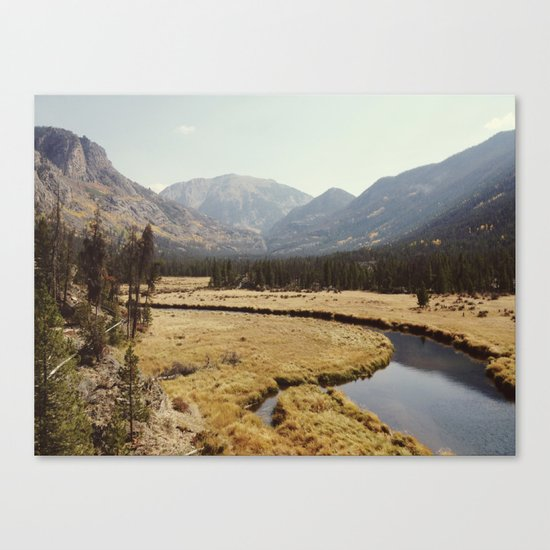 Rocky Mountain Meadow Canvas Print