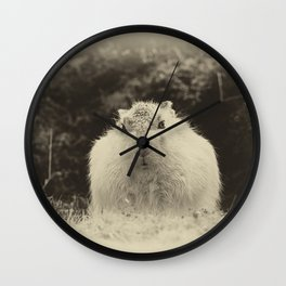 MOUNTAIN HARE Wall Clock