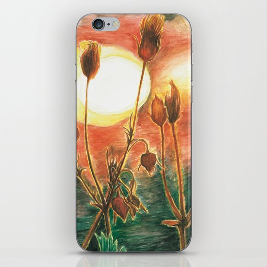 Prairie Sunset iPhone & iPod Skin