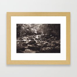 The Clearing 2 Framed Art Print