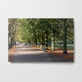 Avenue of Trees at Greenwich Park Metal Print