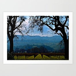Napa Vineyard Art Print