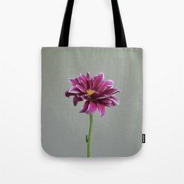 Magenta Gerbera Daisy | Flower Tote Bag