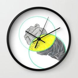 grebe Wall Clock