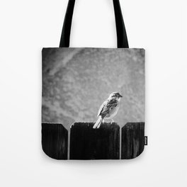 Sparrow BW Tote Bag