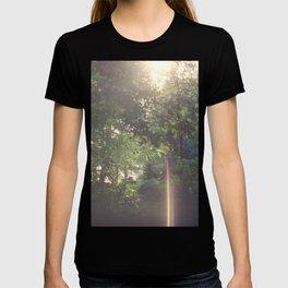 263//365 T-shirt
