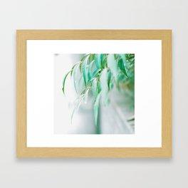 Gentle Greens (Color) Framed Art Print