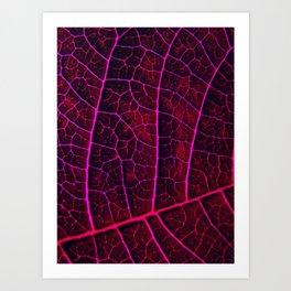LEAF STRUCTURE RED VIOLET Art Print