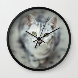 Cat's eyes Wall Clock