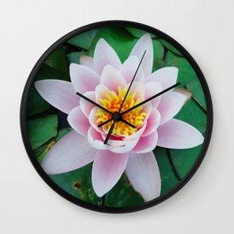 ninfea Wall Clock