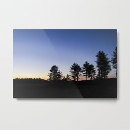 Forest Sunset # 10 Metal Print