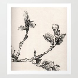 Ink Branch Art Print