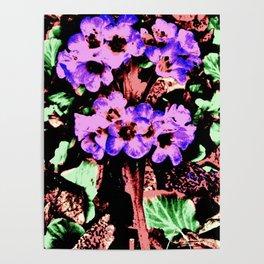 Vintage Purple Wildflower Poster