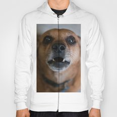 Grizzley Hoody