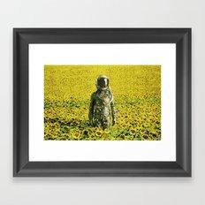 Stranded in the sunflower field Framed Art Print
