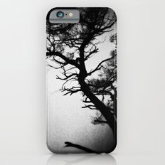Tree in the fog iPhone 6s Slim Case